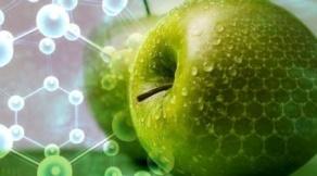Перспективы развития АПК на основе внедрения достижений наноиндустрии